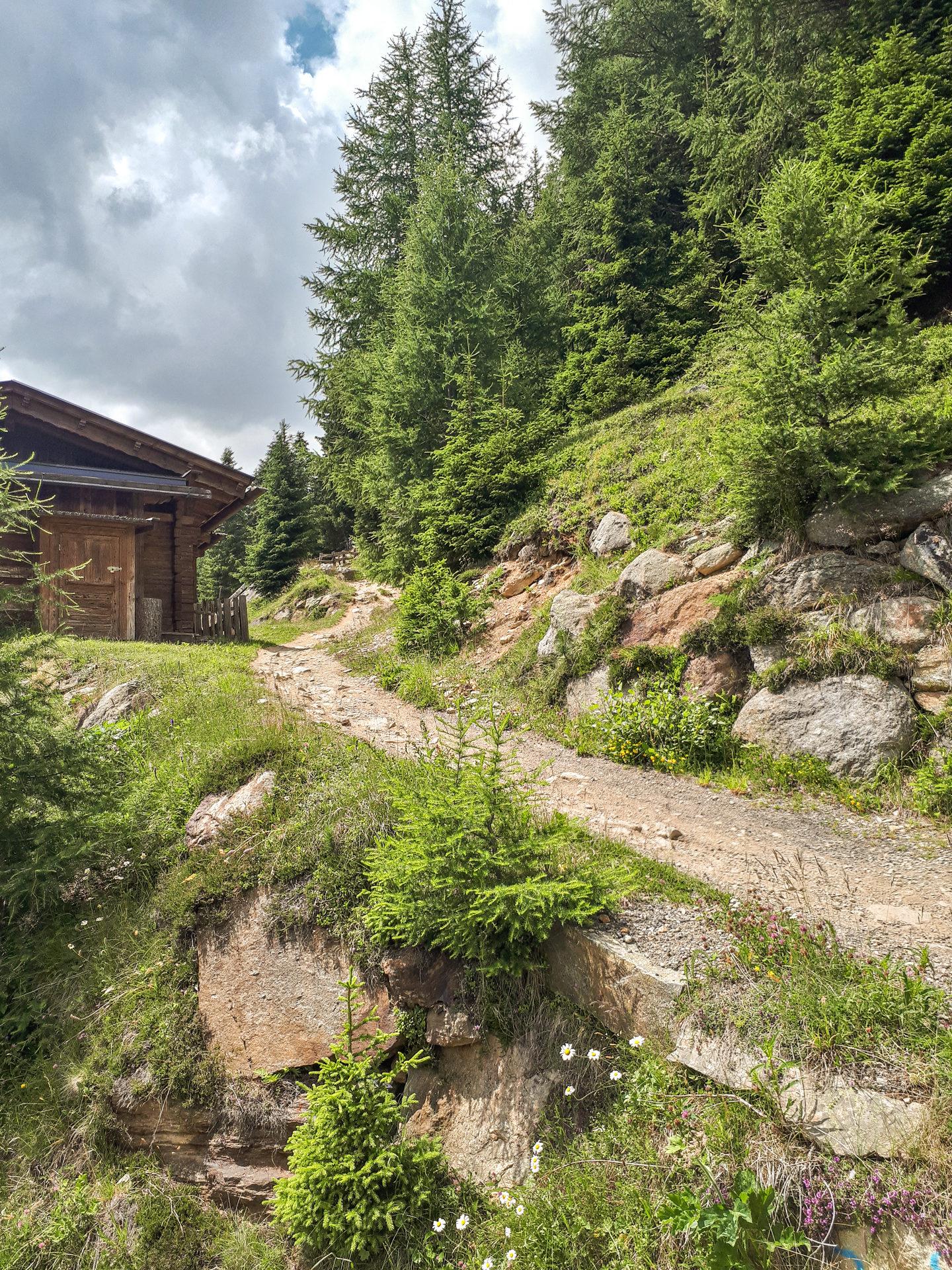 Выкат к Leiteralm на Leiterberg Trail