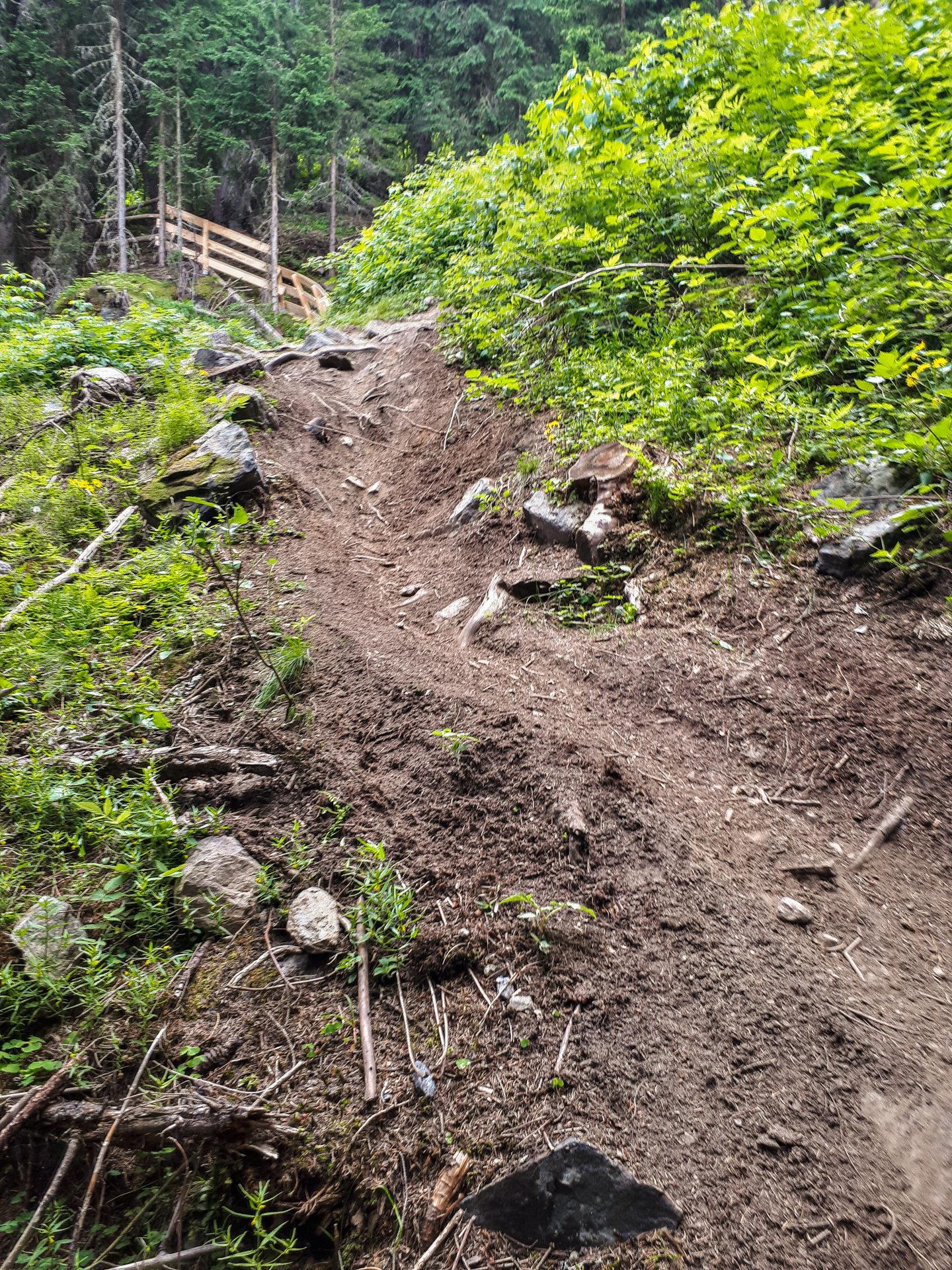 Техничный участок на Leiterberg Trail