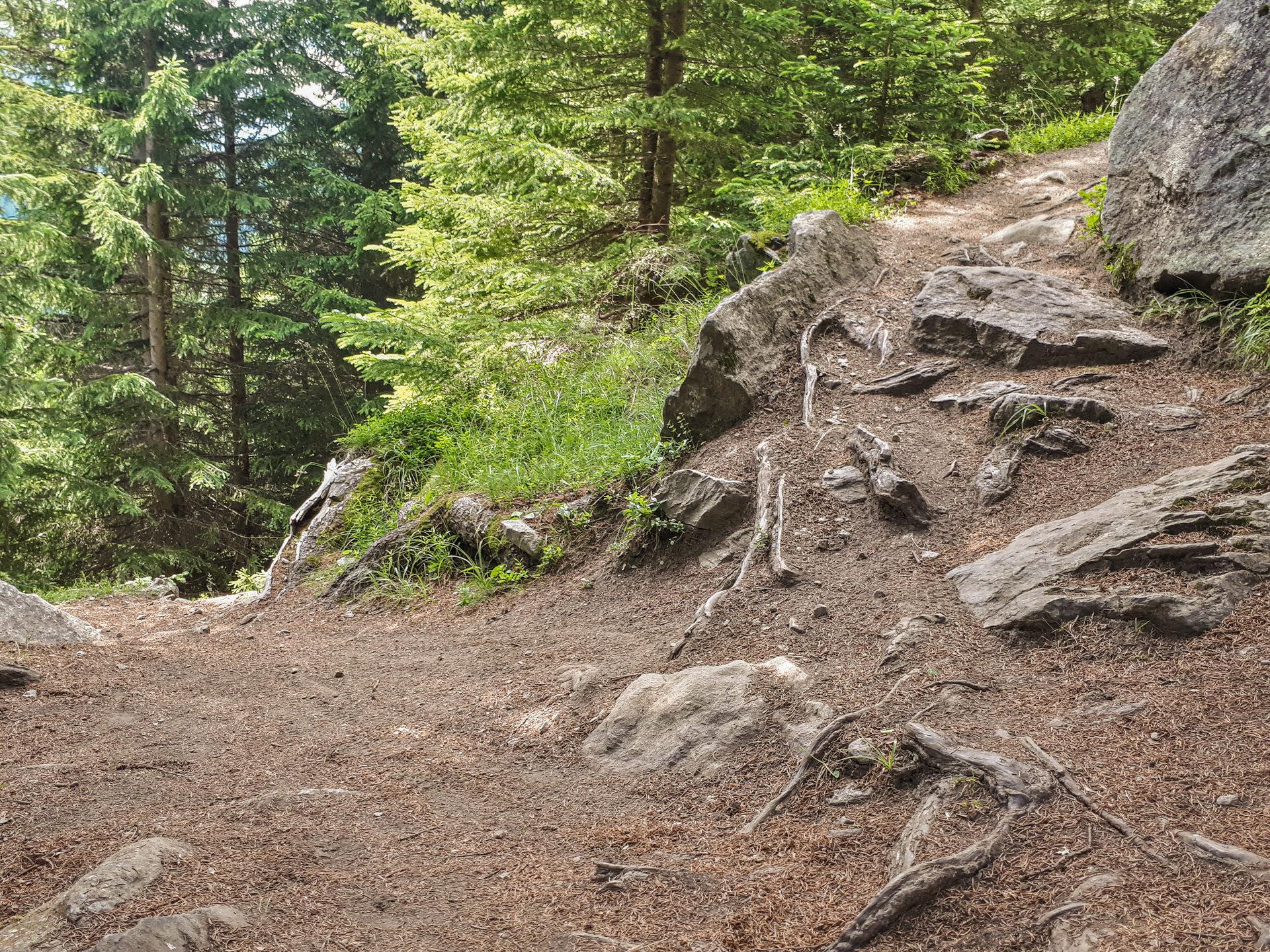 Камешки Bodenegg Trail