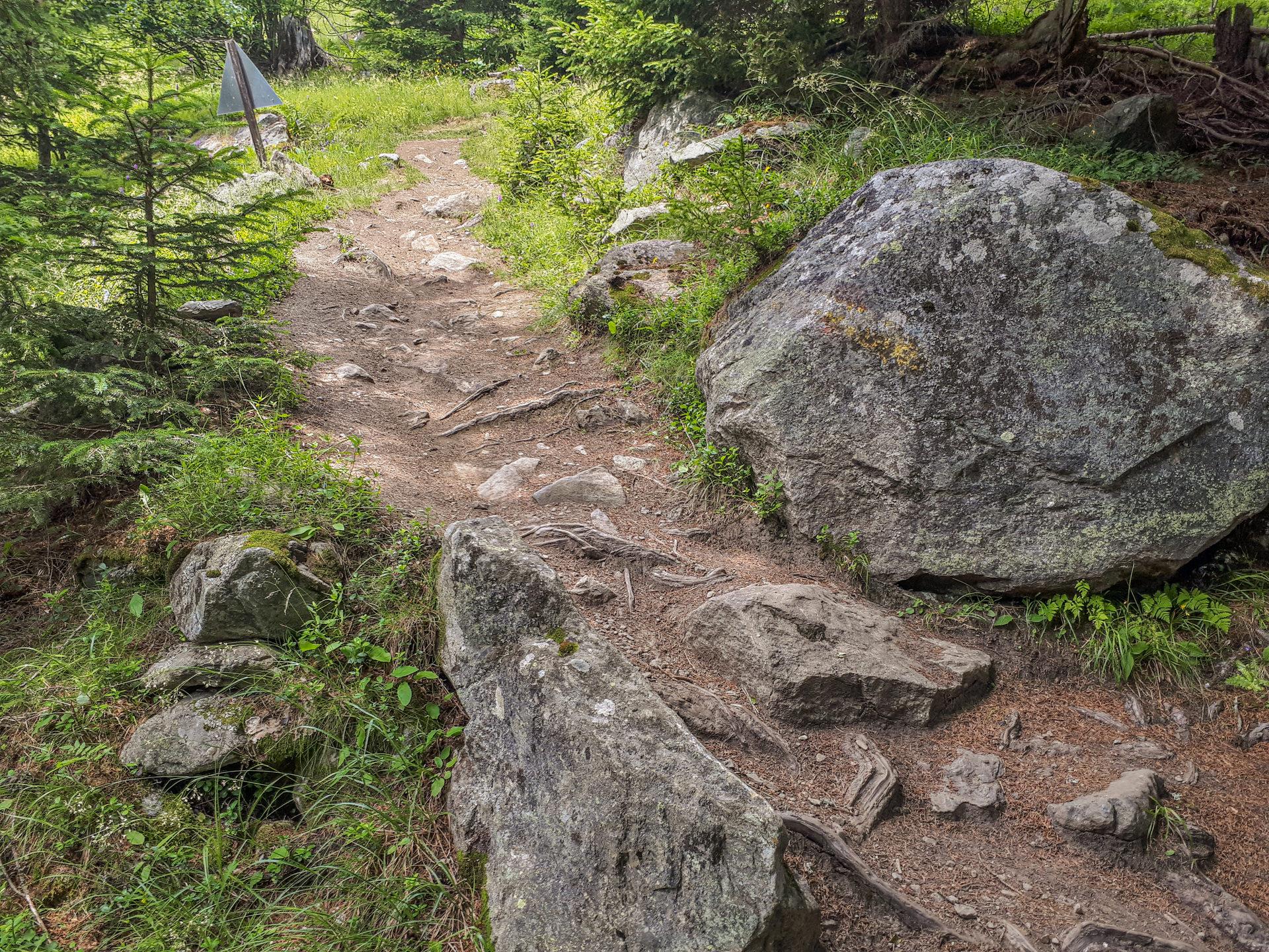 Bodenegg Trail
