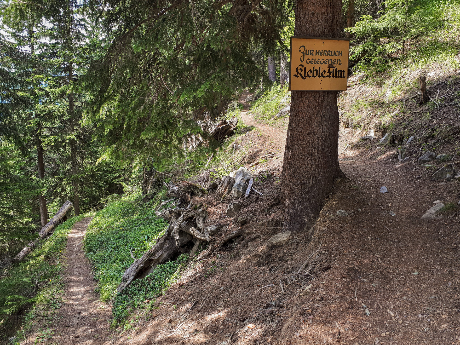 Развилка на Lochle Alm Trail
